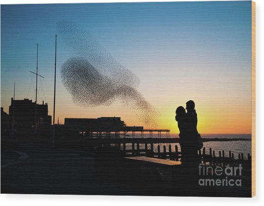 Love Birds At Sunset Wood Print