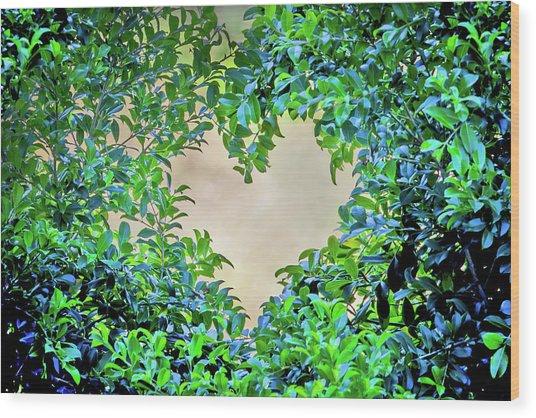 Love Leaves Wood Print