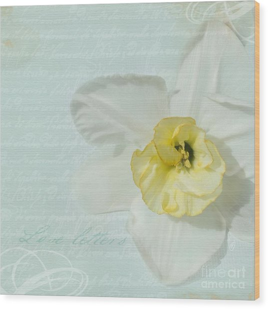 Love Letters From A Spring Romance Wood Print