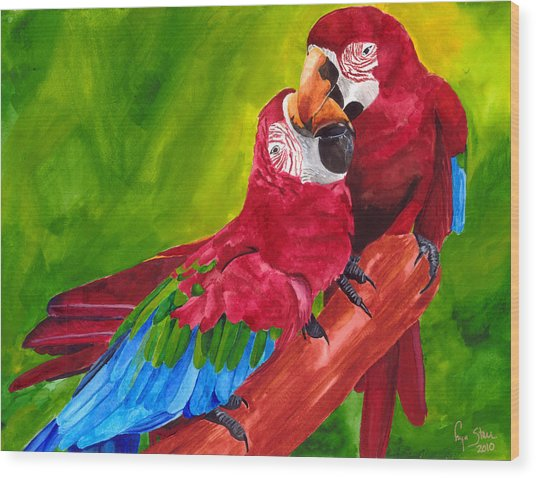 Love Macaws Wood Print