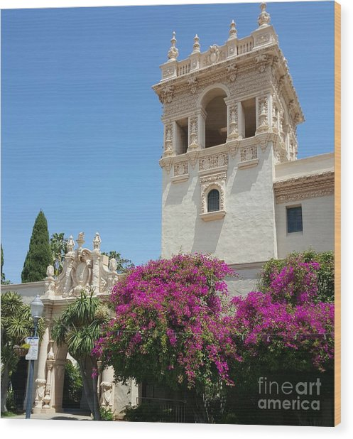Lovely Blooming Day In Balboa Park San Diego Wood Print