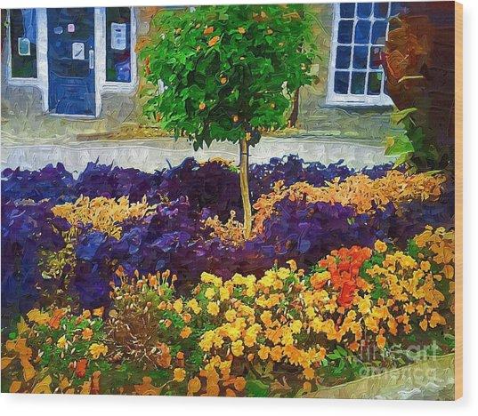 Lovely Colors Wood Print by Deborah Selib-Haig DMacq