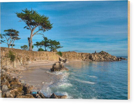 Lovers Point Pacific Grove Early Morning Wood Print