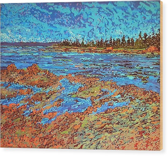 Low Tide Oak Bay Nb Wood Print