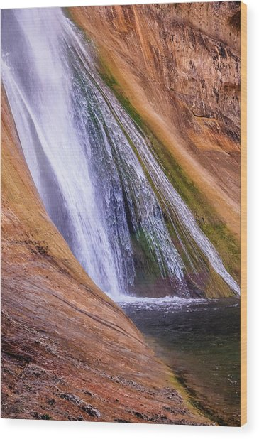 Lower Calf Creek Falls Wood Print
