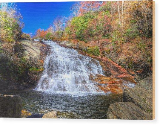 Lower Falls At Graveyard Fields Wood Print