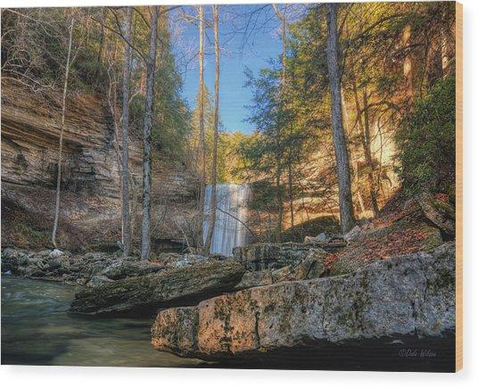 Lower Greeter Falls 2 Wood Print by Dale Wilson