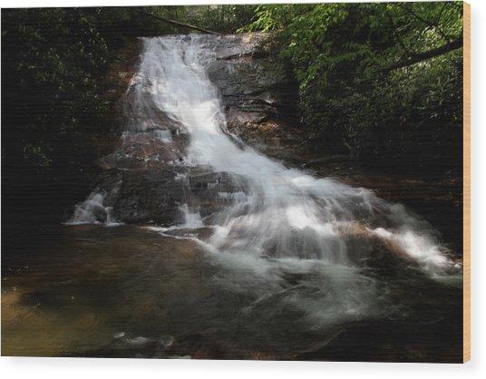 Lower Helton Creek Falls Wood Print by Dave Clark