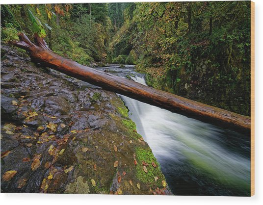 Lower Punch Bowl Falls Wood Print