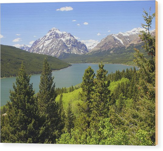 Lower Two Medicine Lake Wood Print