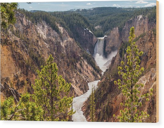 Lower Yellowstone Canyon Falls 5 - Yellowstone National Park Wyoming Wood Print
