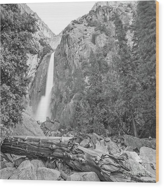 Lower Yosemite Falls In Black And White By Michael Tidwell Wood Print