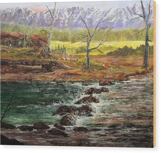 Lowwater Crossing  Wood Print