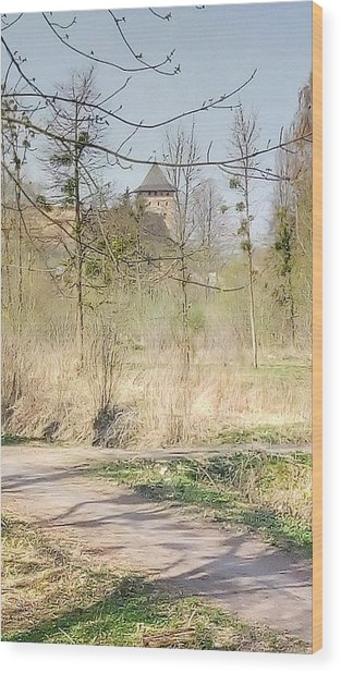 Lubart Castle Wood Print