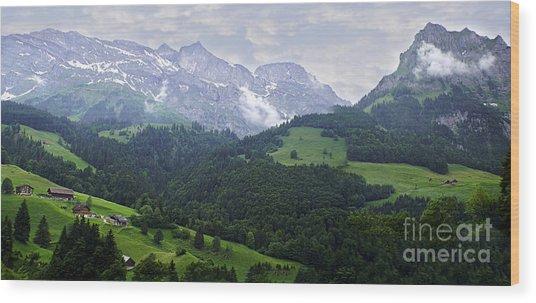Lucerne 14 Wood Print