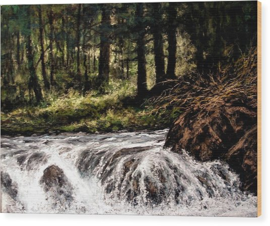 Lucia Falls In July Wood Print