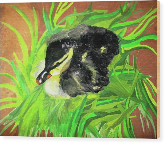Lucky Duckling Wood Print
