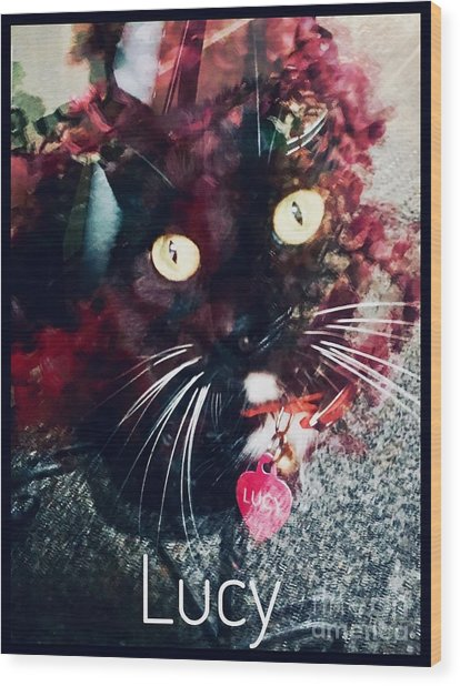 Lucy The Cat Wood Print