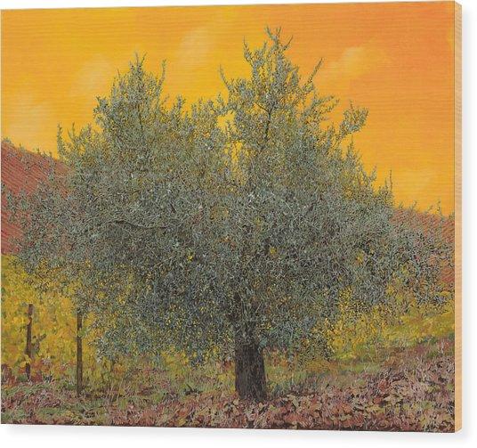 L'ulivo Tra Le Vigne Wood Print