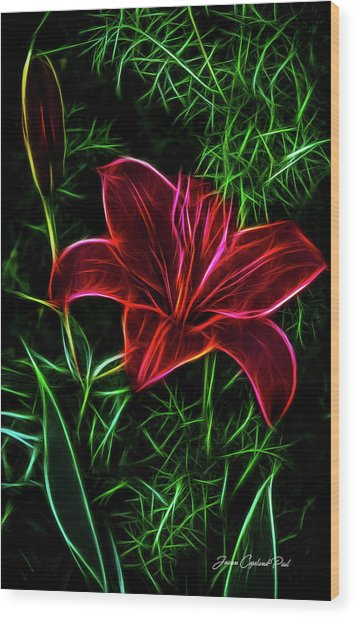 Luminous Lily Wood Print