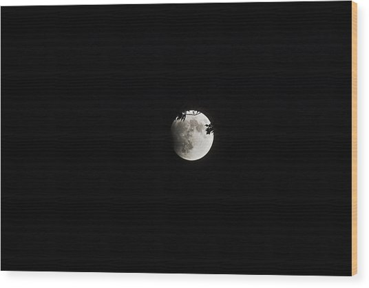 Lunar Eclipse Starting Wood Print by Mark Russell