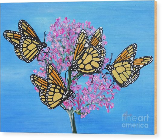 Butterfly Feeding Frenzy Wood Print