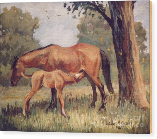 Lunchtime   Mare And Foal Wood Print by JoAnne Corpany