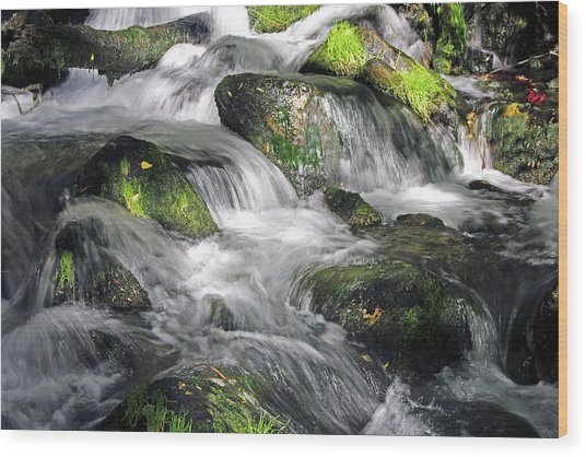 Lundy Creek 2 Wood Print