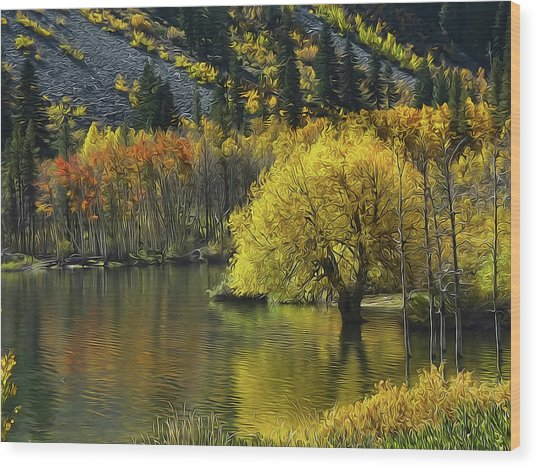 Lundy Lake Beauty Wood Print