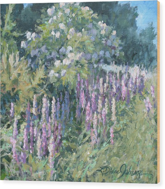 Lupine On Parade Wood Print by L Diane Johnson