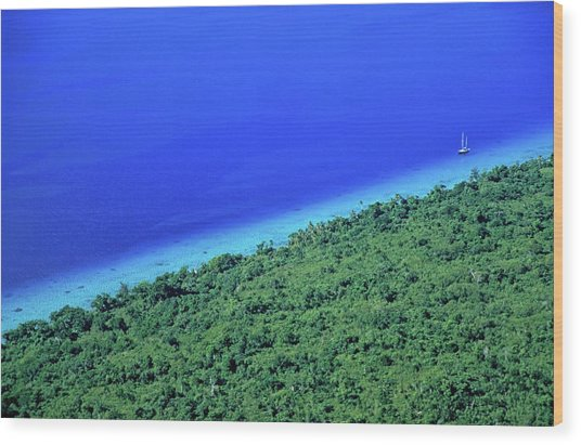 Lush Coast And Blue Waters Of The Sea Surrounding Mosso Island Wood Print by Sami Sarkis