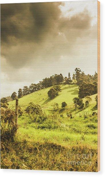 Lush Green Country Farmland Wood Print