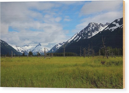 Lush Meadow In Alaska Wood Print