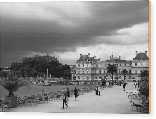 Luxembourg Gardens 2bw Wood Print