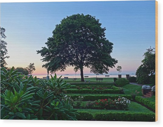 Lynch Park At Dawn Beverly Ma Wood Print