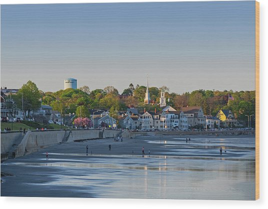 Lynn Waterfront Swampscott Water Tower Lynn Ma Wood Print