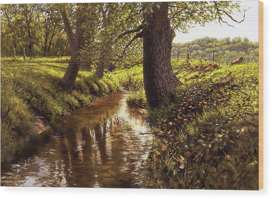 Lyon Valley Creek Wood Print