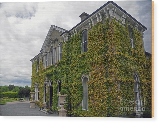 Lyrath Estate Hotel Wood Print
