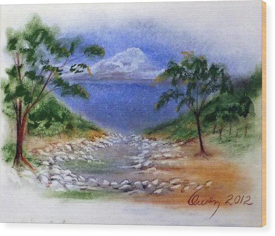 Lytle Creek Wood Print