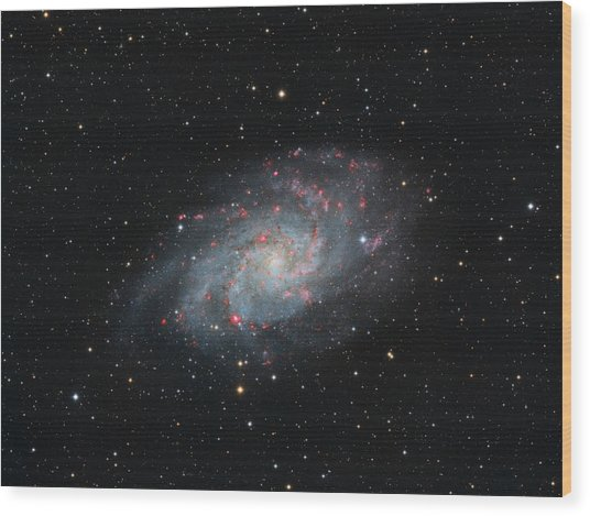 M33 - Triangulum Wood Print
