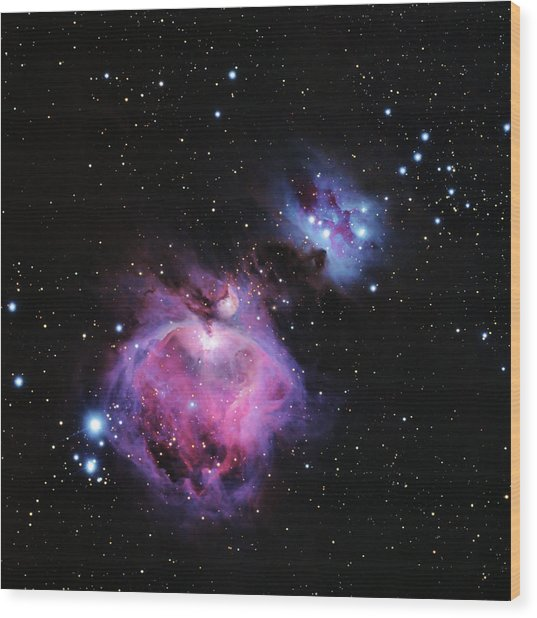M42--the Great Nebula In Orion Wood Print