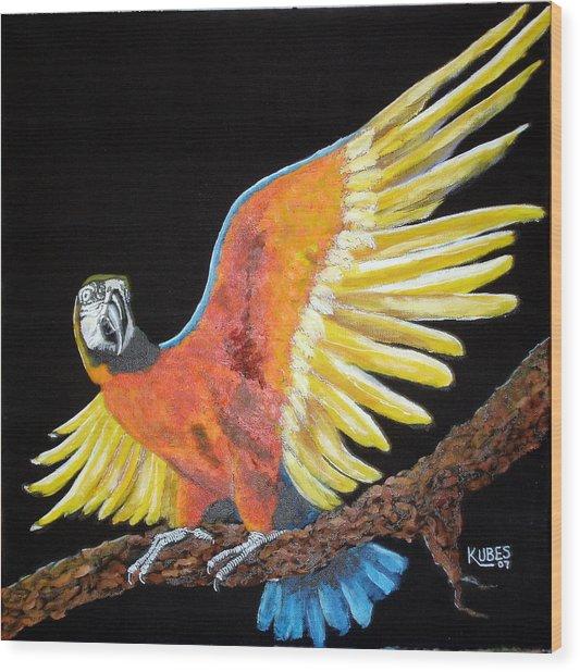 Macaw - Wingin' It Wood Print by Susan Kubes