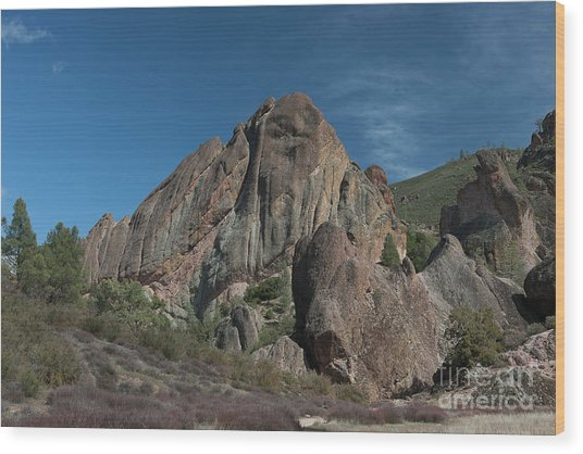 Machete Ridge Lighter Wood Print