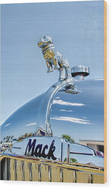 Mack Hood Ornament Wood Print