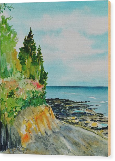 Mackworth Island Maine  Wood Print