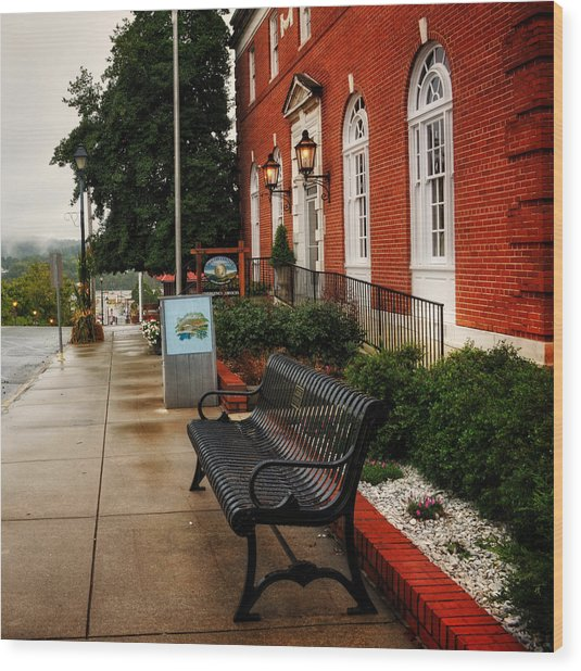 Macon County Emergency Services Wood Print