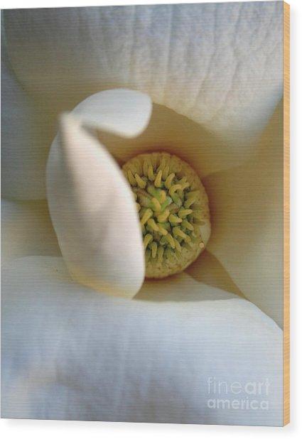 Macro Magnolia Wood Print