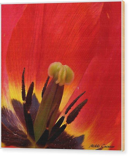 Macro Of Tulip Wood Print