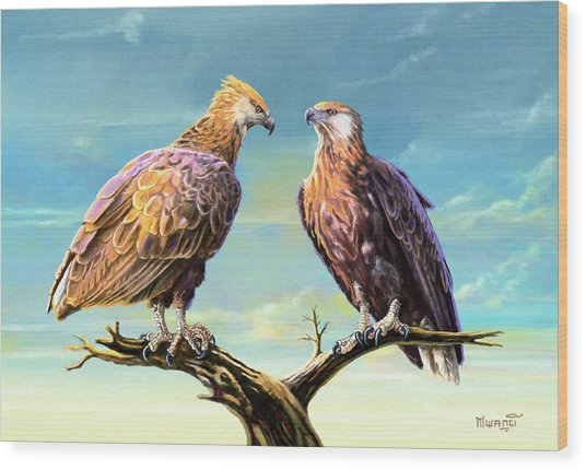 Madagascar Fish Eagle  Wood Print