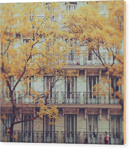 Madrid Facade In Late Autumn Wood Print by Julia Davila-Lampe
